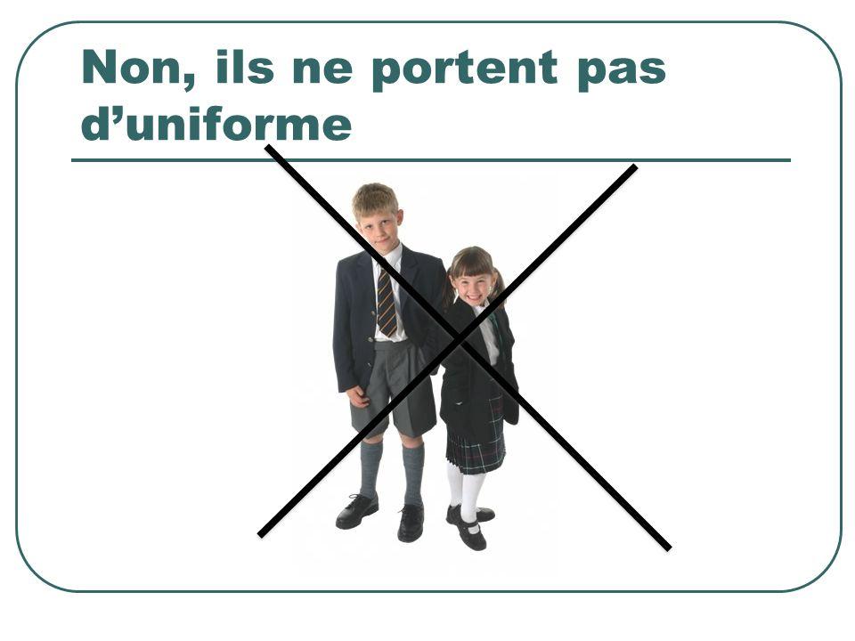 Uniform In primary school they wear slippers indoors.