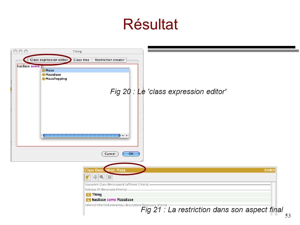 53 Résultat Fig 21 : La restriction dans son aspect final Fig 20 : Le 'class expression editor'