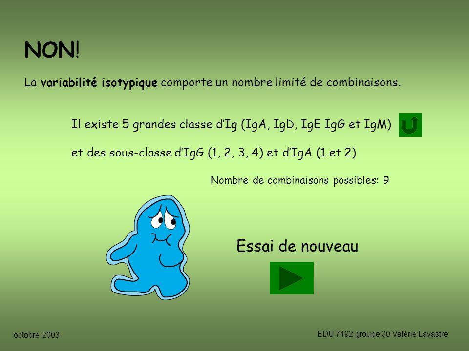 octobre 2003 EDU 7492 groupe 30 Valérie Lavastre Essai de nouveau NON.