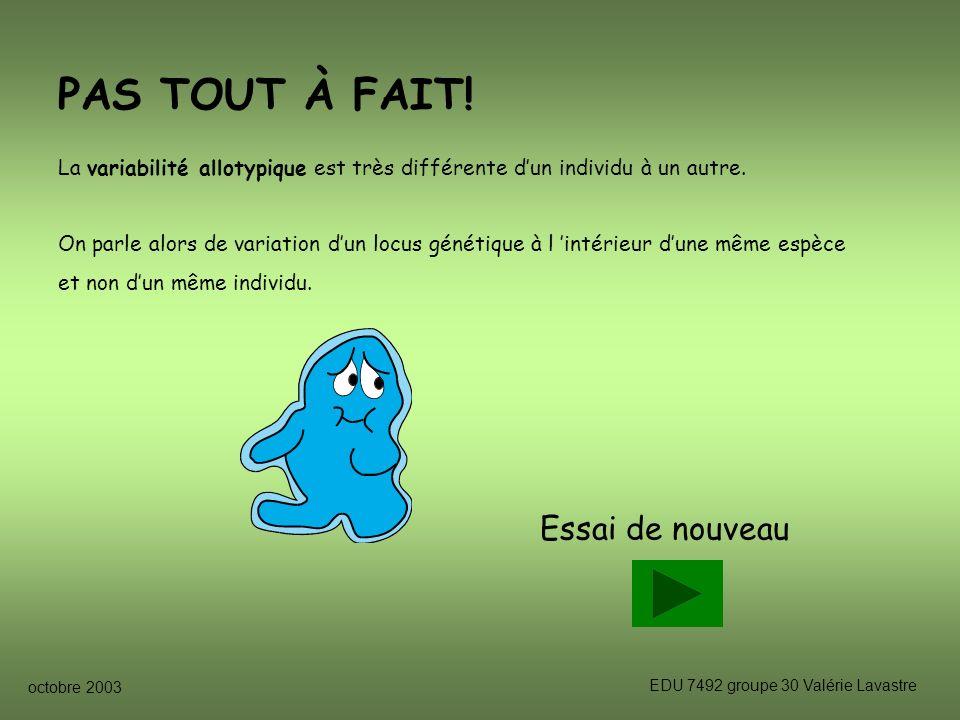 octobre 2003 EDU 7492 groupe 30 Valérie Lavastre Essai de nouveau PAS TOUT À FAIT.