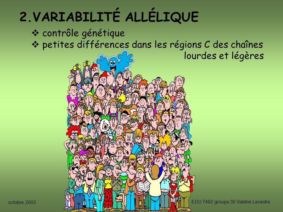 octobre 2003 EDU 7492 groupe 30 Valérie Lavastre 2.VARIABILITÉ ALLÉLIQUE contrôle génétique petites différences dans les régions C des chaînes lourdes et légères