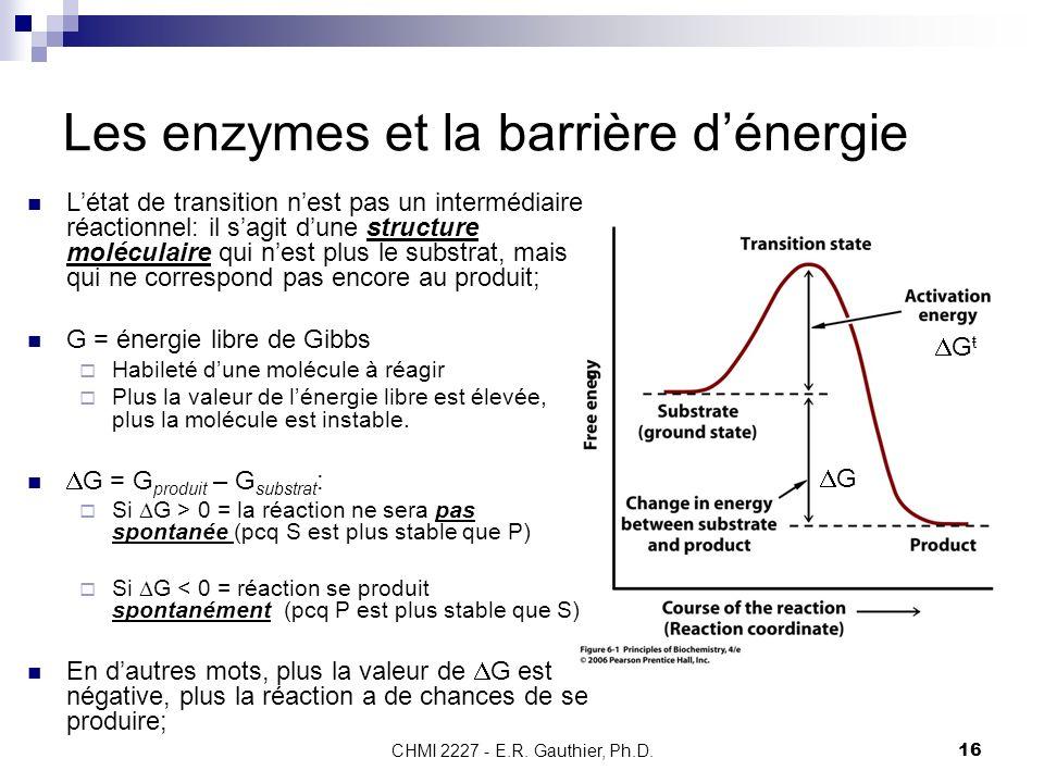 CHMI 2227 - E.R. Gauthier, Ph.D.16 Les enzymes et la barrière dénergie G ŧ G Létat de transition nest pas un intermédiaire réactionnel: il sagit dune
