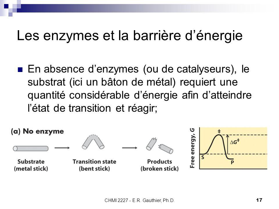 CHMI 2227 - E.R. Gauthier, Ph.D.17 Les enzymes et la barrière dénergie En absence denzymes (ou de catalyseurs), le substrat (ici un bâton de métal) re