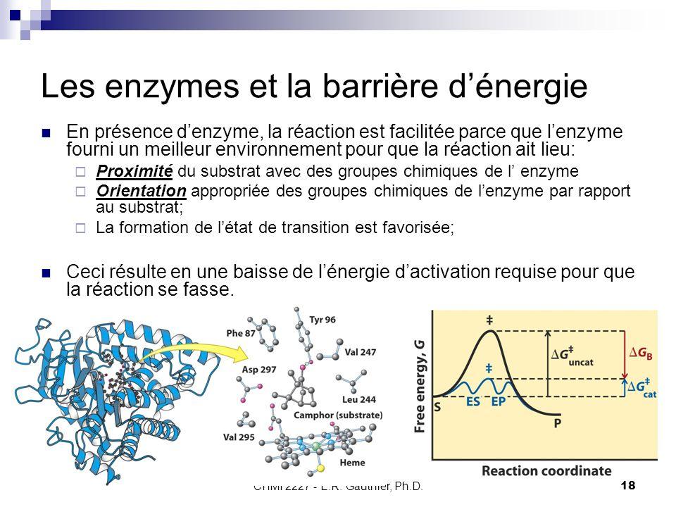 CHMI 2227 - E.R. Gauthier, Ph.D.18 Les enzymes et la barrière dénergie En présence denzyme, la réaction est facilitée parce que lenzyme fourni un meil