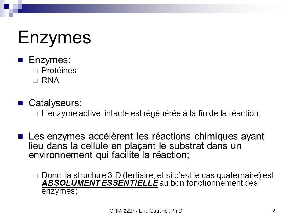 CHMI 2227 - E.R. Gauthier, Ph.D.2 Enzymes Enzymes: Protéines RNA Catalyseurs: Lenzyme active, intacte est régénérée à la fin de la réaction; Les enzym