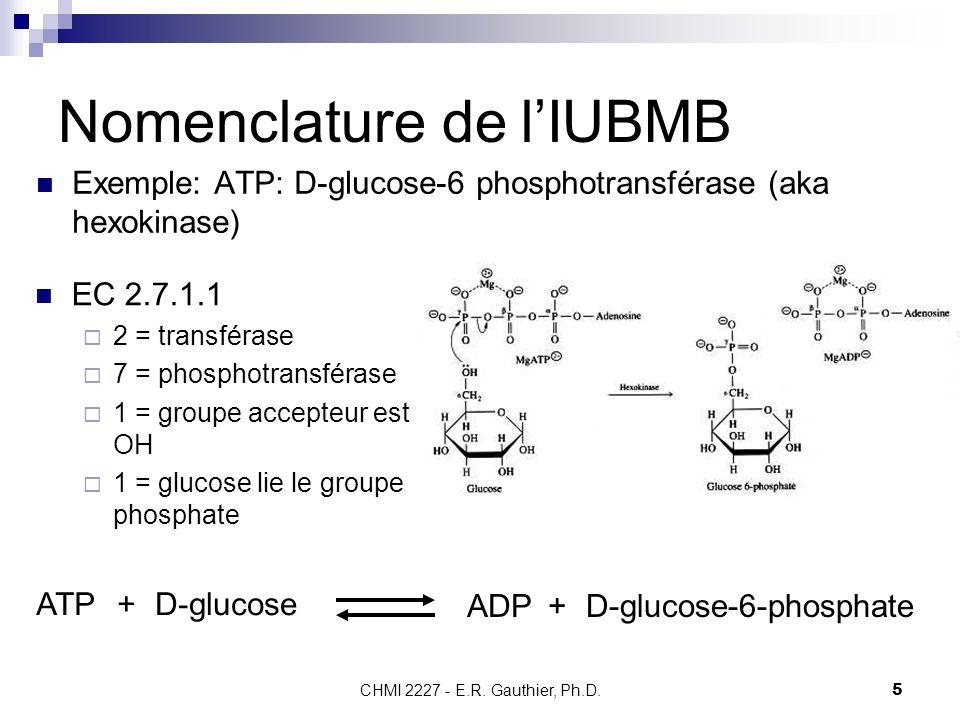 CHMI 2227 - E.R. Gauthier, Ph.D.5 Nomenclature de lIUBMB ATP+D-glucose ADP+D-glucose-6-phosphate Exemple: ATP: D-glucose-6 phosphotransférase (aka hex