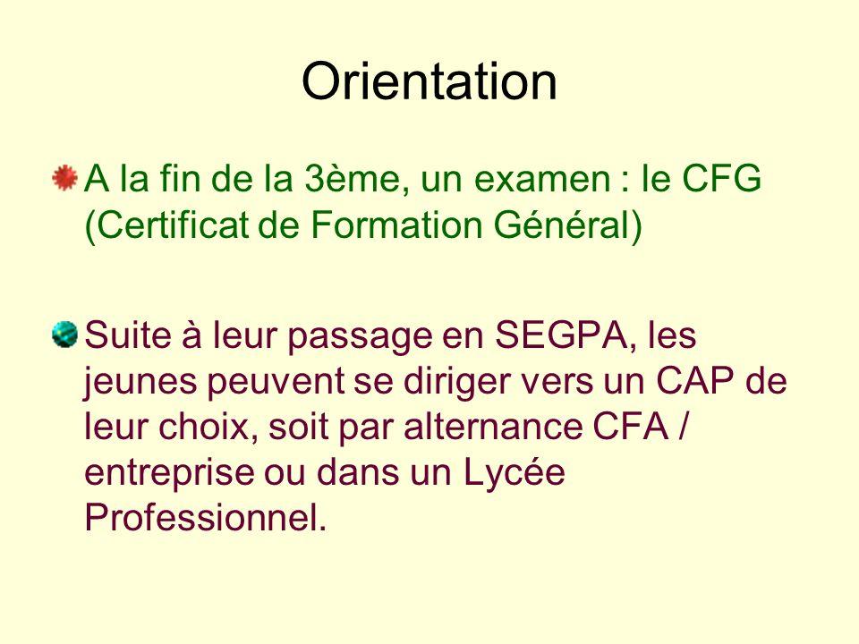 Orientation A la fin de la 3ème, un examen : le CFG (Certificat de Formation Général) Suite à leur passage en SEGPA, les jeunes peuvent se diriger ver