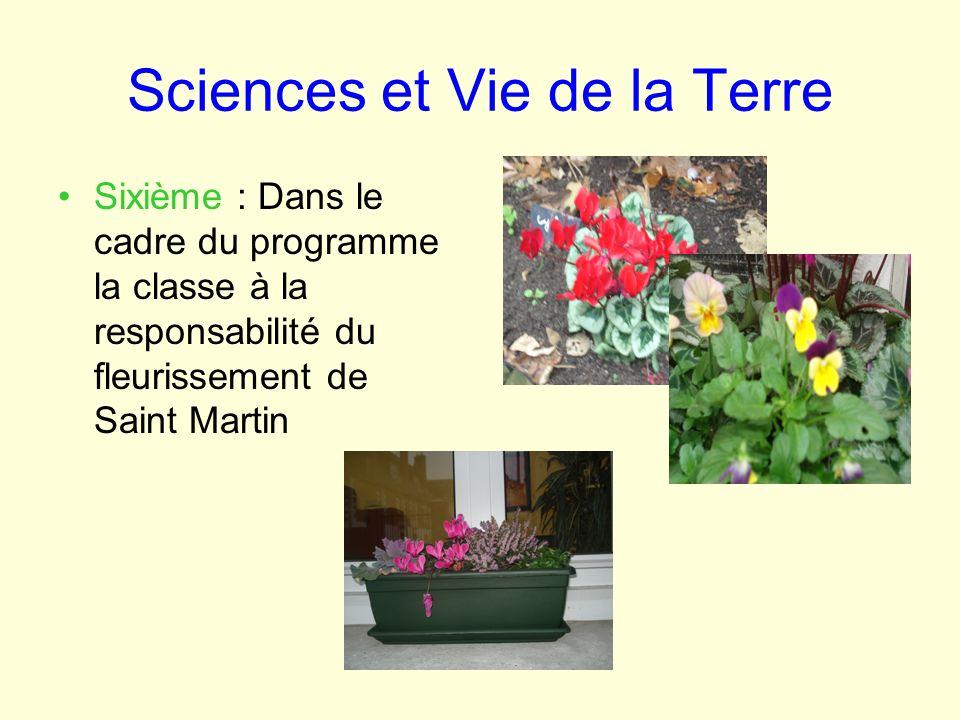 Sciences et Vie de la Terre Sixième : Dans le cadre du programme la classe à la responsabilité du fleurissement de Saint Martin