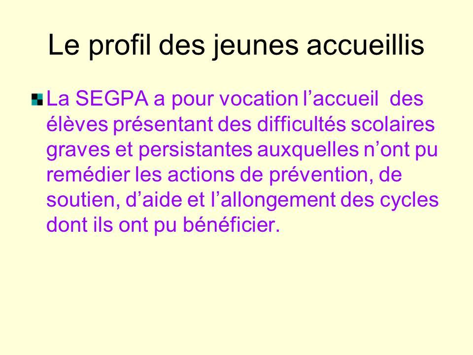 Le profil des jeunes accueillis La SEGPA a pour vocation laccueil des élèves présentant des difficultés scolaires graves et persistantes auxquelles n