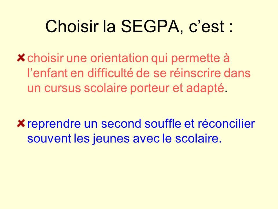 Choisir la SEGPA, cest : choisir une orientation qui permette à lenfant en difficulté de se réinscrire dans un cursus scolaire porteur et adapté. repr
