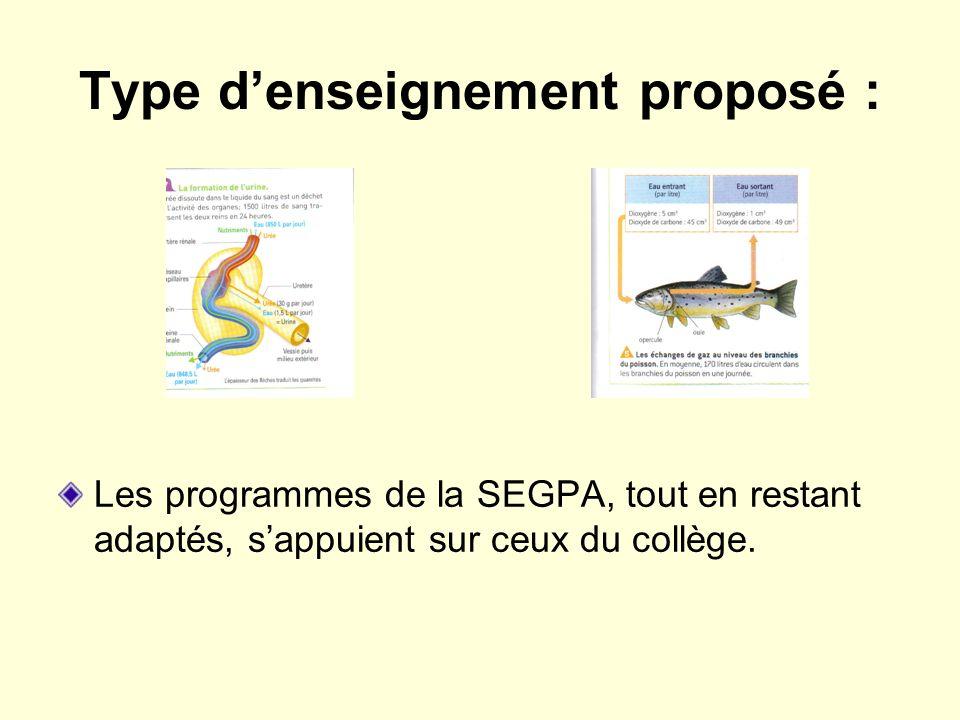 Type denseignement proposé : Les programmes de la SEGPA, tout en restant adaptés, sappuient sur ceux du collège.