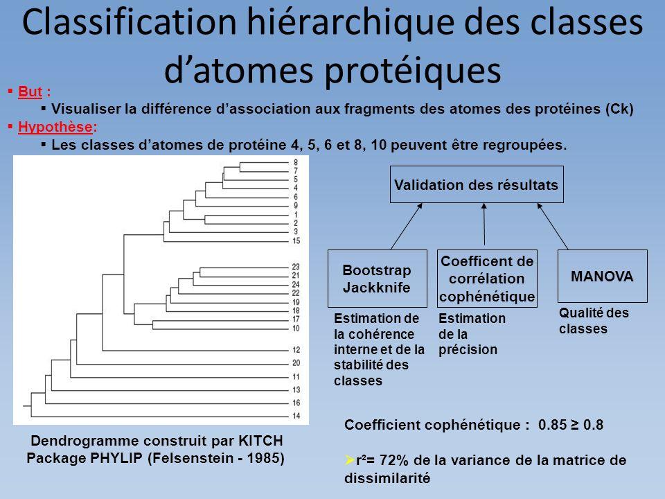 But : Visualiser la différence dassociation aux fragments des atomes des protéines (Ck) Hypothèse: Les classes datomes de protéine 4, 5, 6 et 8, 10 pe