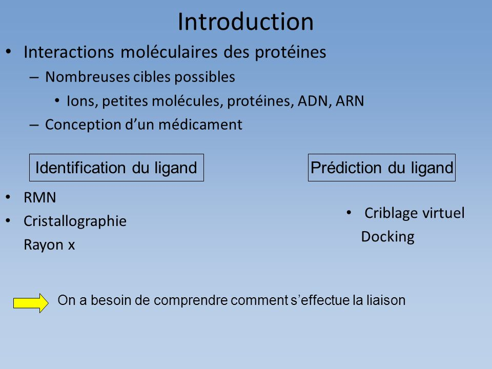 Introduction Interactions moléculaires des protéines – Nombreuses cibles possibles Ions, petites molécules, protéines, ADN, ARN – Conception dun médicament Prédiction du ligandIdentification du ligand Criblage virtuel Docking RMN Cristallographie Rayon x On a besoin de comprendre comment seffectue la liaison