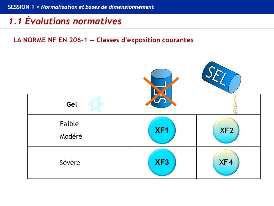 1.1 Évolutions normatives SESSION 1 > Normalisation et bases de dimensionnement LA NORME NF EN 206-1 Classes dexposition courantes Sévère Faible Modér