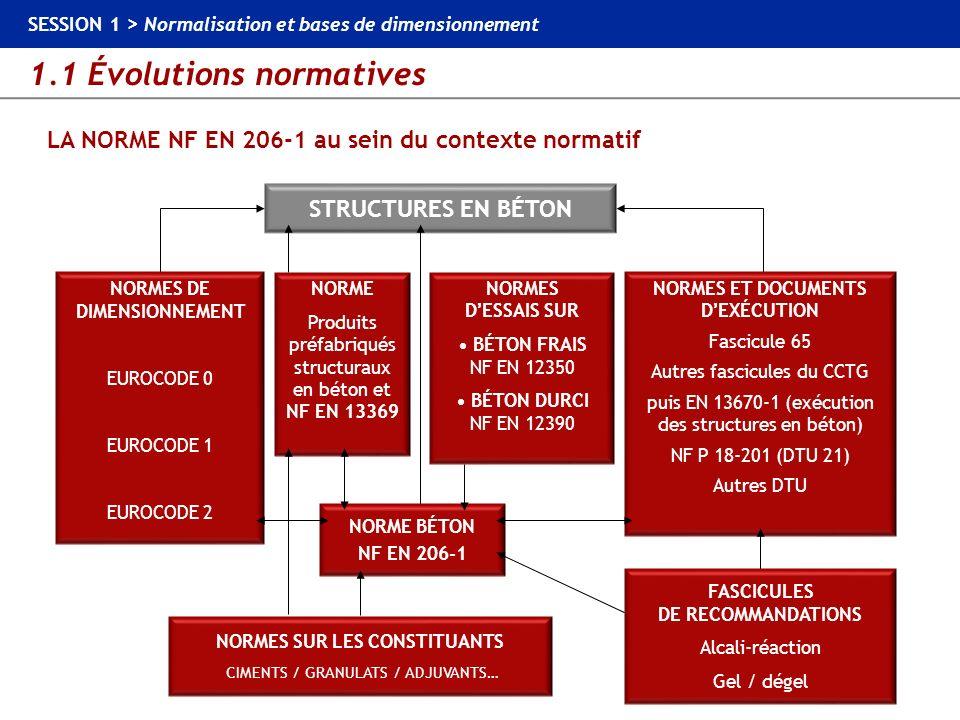 1.1 Évolutions normatives SESSION 1 > Normalisation et bases de dimensionnement LA NORME NF EN 206-1 BPS Cl 0,20 Cl 0,40 Cl 0,65 Cl 1,00 Cl 0,20 Cl 0,40 Cl 0,65 Cl 1,00 Cl 0,40 BA > 90 % 0,40 % Classes de teneur en chlorures N O U V E A U BPS NF EN 206-1