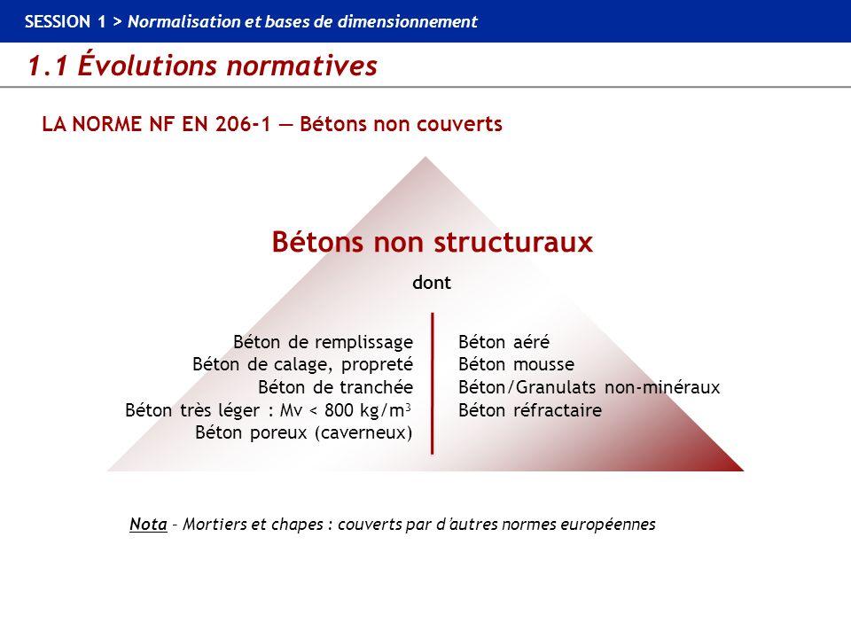 1.1 Évolutions normatives SESSION 1 > Normalisation et bases de dimensionnement LA NORME NF EN 206-1 Classes dexposition particulières pouvant concerner les bétons routiers Corrosions des armatures par les chlorures XD ou XS Béton armé ou précontraint