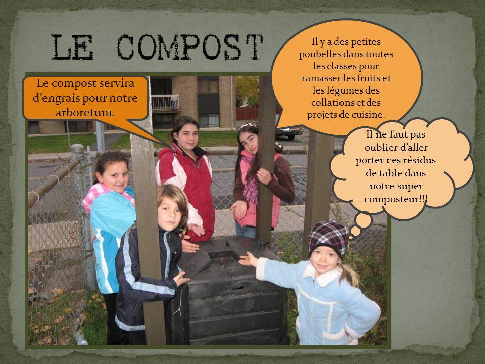 Il y a des petites poubelles dans toutes les classes pour ramasser les fruits et les légumes des collations et des projets de cuisine.