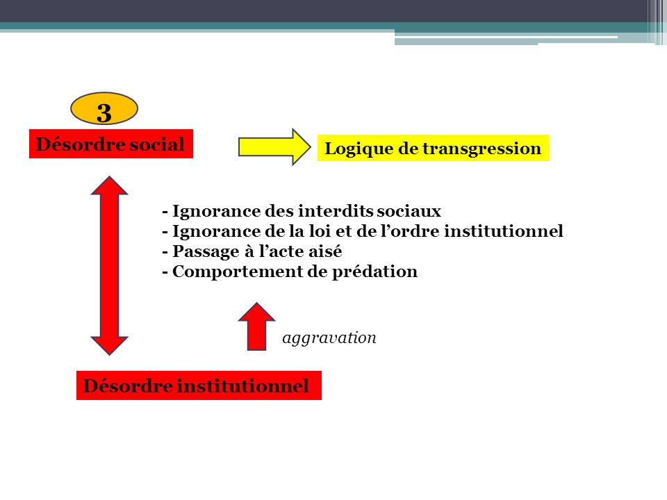 Désordre social - Ignorance des interdits sociaux - Ignorance de la loi et de lordre institutionnel - Passage à lacte aisé - Comportement de prédation Logique de transgression Désordre institutionnel aggravation 3