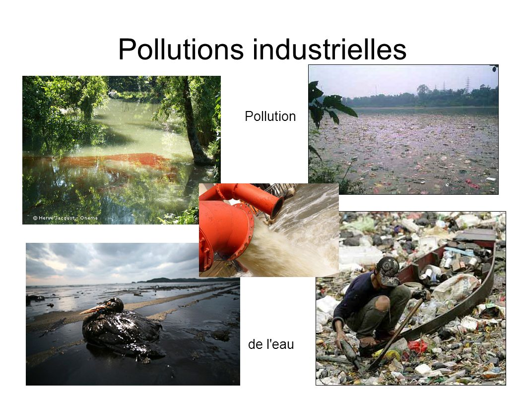 Pollutions industrielles Pollution de l'eau