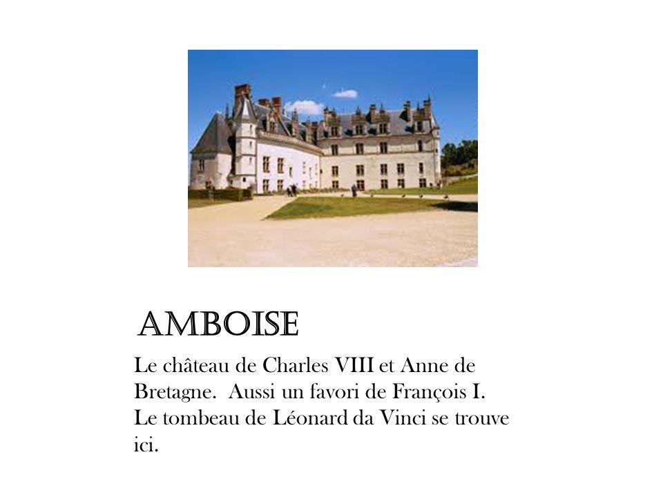 Amboise Le château de Charles VIII et Anne de Bretagne. Aussi un favori de François I. Le tombeau de Léonard da Vinci se trouve ici.