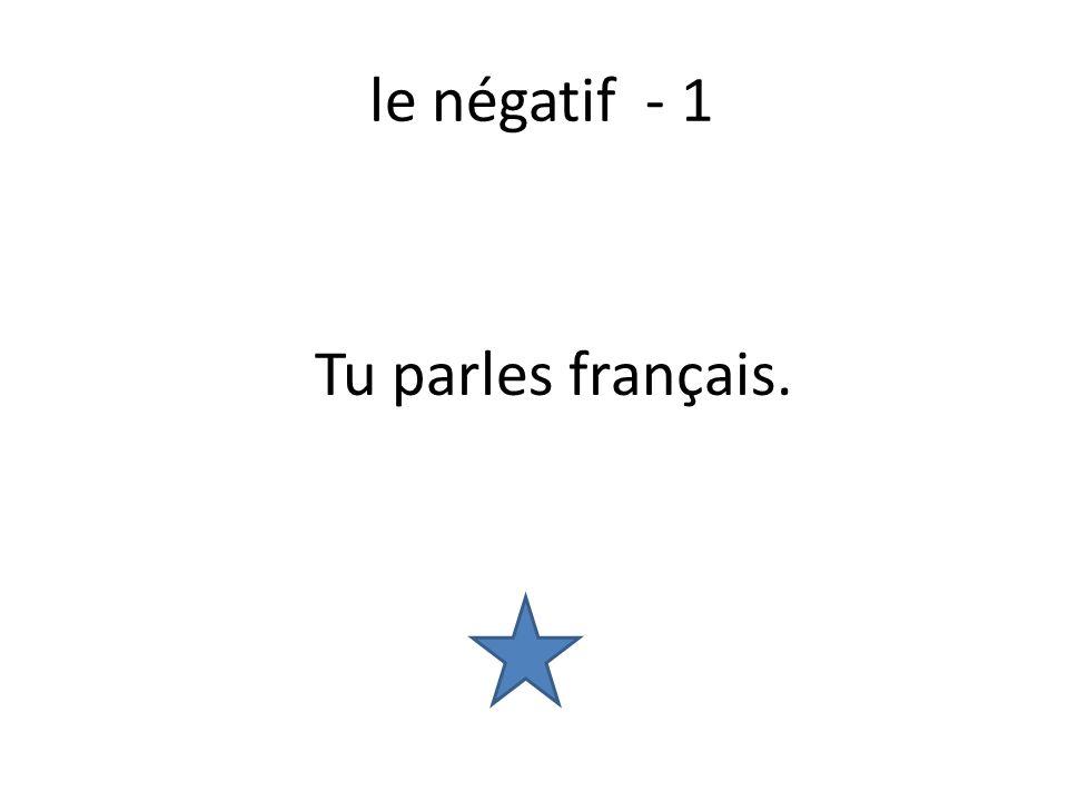 le négatif - 1 Tu parles français.