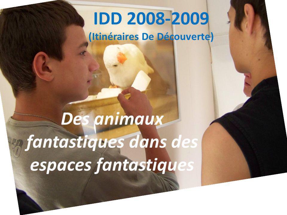IDD 2008-2009 (Itinéraires De Découverte) Des animaux fantastiques dans des espaces fantastiques