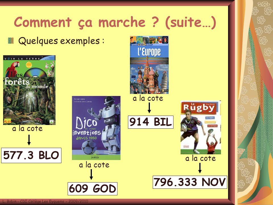 Quelques exemples : L.Bobin – CDI Collège Les Eyquems – 2009/2010 Comment ça marche .
