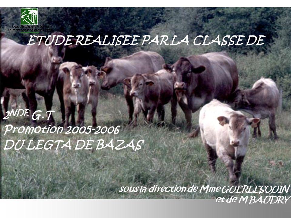 ETUDE REALISEE PAR LA CLASSE DE 2 NDE G.T Promotion 2005-2006 DU LEGTA DE BAZAS sous la direction de Mme GUERLESQUIN et de M BAUDRY