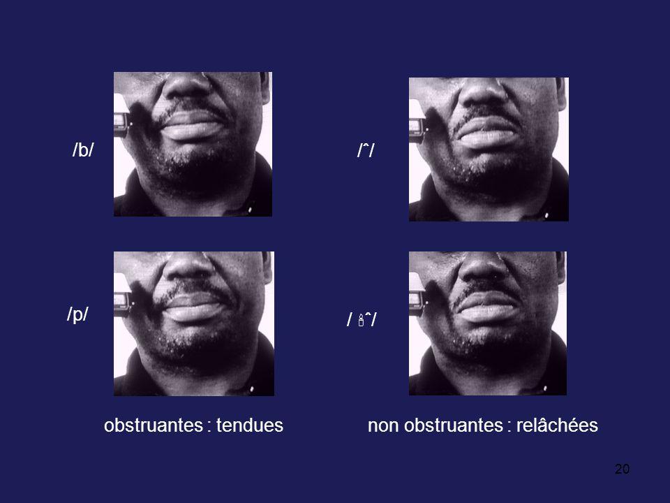 20 /ˆ//ˆ/ agbaakpa /b/ /p/ / ˆ/ obstruantes : tenduesnon obstruantes : relâchées