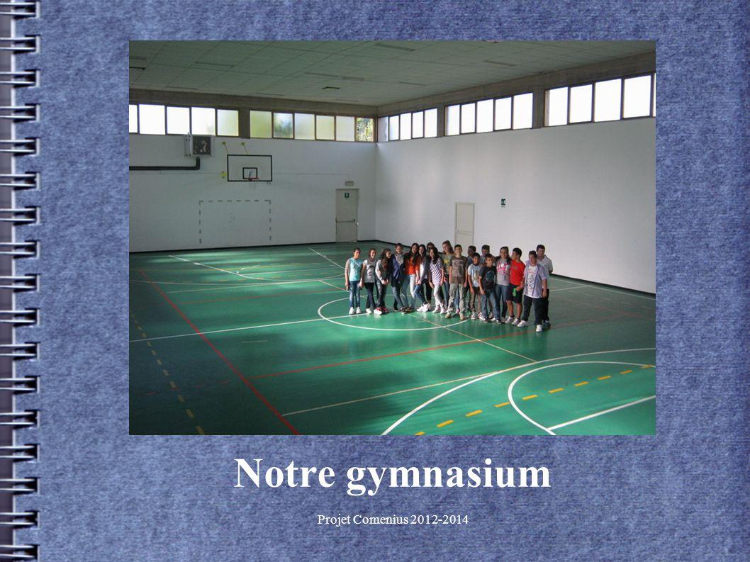 Projet Comenius 2012-2014 Notre gymnasium