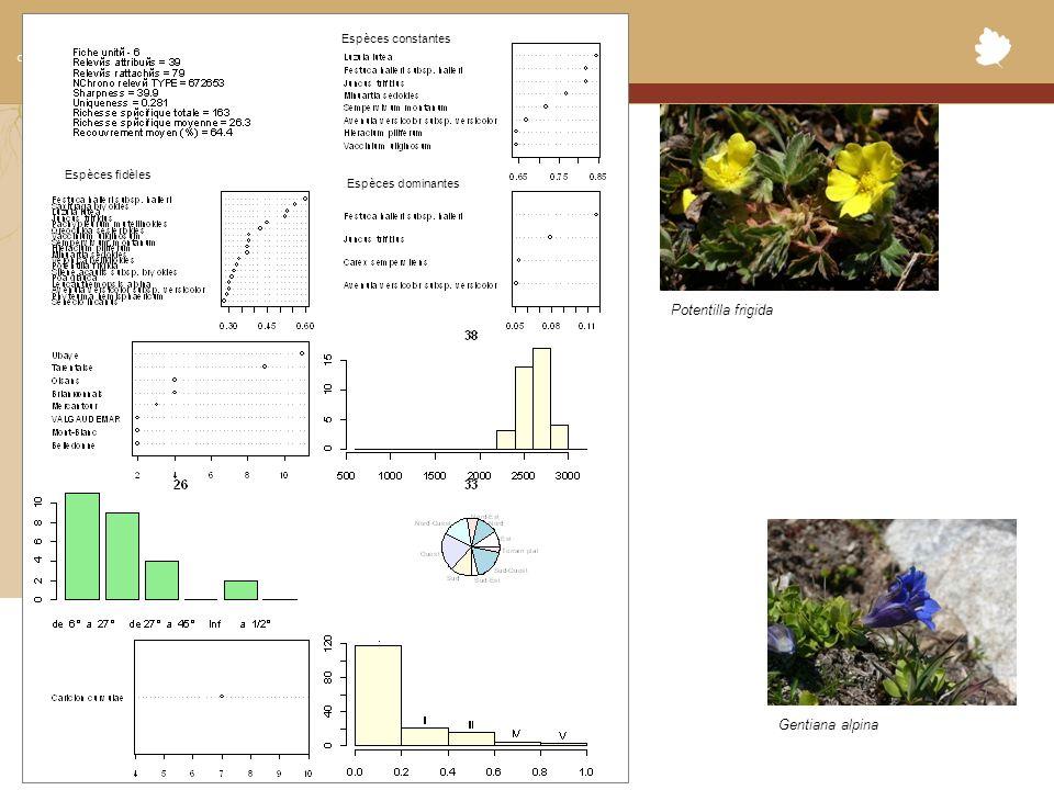 Conservatoire Botanique National Alpin Espèces constantes Espèces fidèles Espèces dominantes Potentilla frigida Gentiana alpina