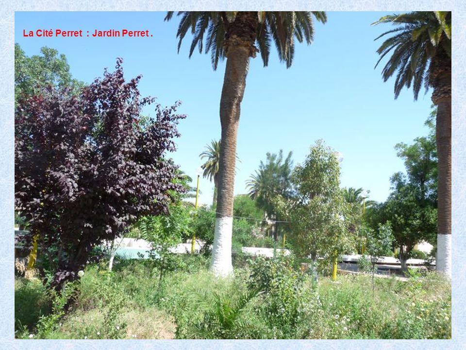La Cité Perret : Jardin Perret.