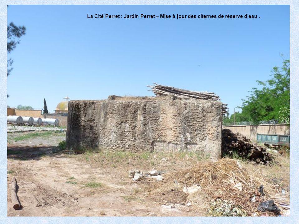 La Cité Perret : Jardin Perret – la pépinière.