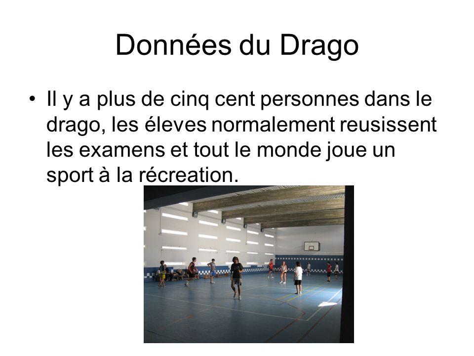 Données du Drago Il y a plus de cinq cent personnes dans le drago, les éleves normalement reusissent les examens et tout le monde joue un sport à la récreation.