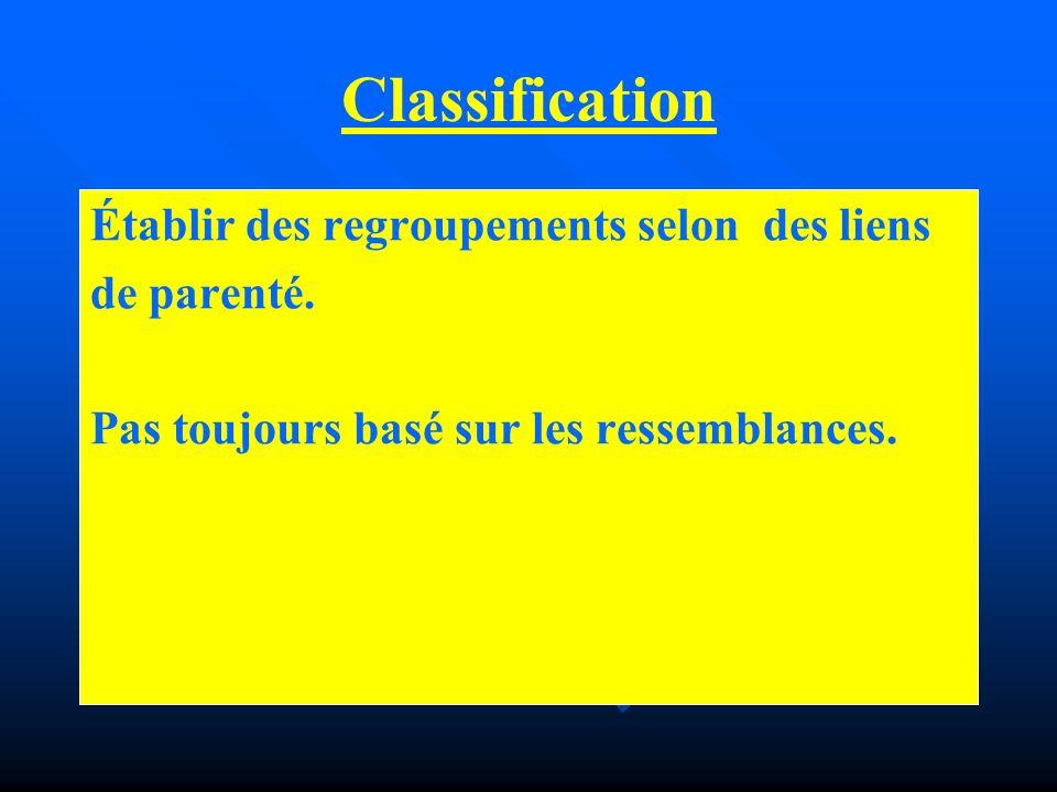 Classification Établir des regroupements selon des liens de parenté. Pas toujours basé sur les ressemblances.