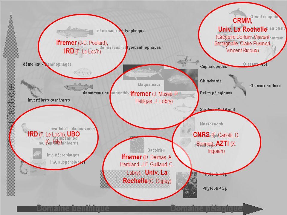8e forum halieumétrique - Aquarium de La Rochelle, 19-21 juin 2007 Conclusion (3) Méthodologie Inconvénients Tous les inconvénients des modèles Ecopath Manque les thons Avantages Permet des comparaisons inter-systèmes Permet de se passer de simulations dynamiques … … dans une certaine mesure Pour aller plus loin Tester sensibilité mesurer variance des KSi