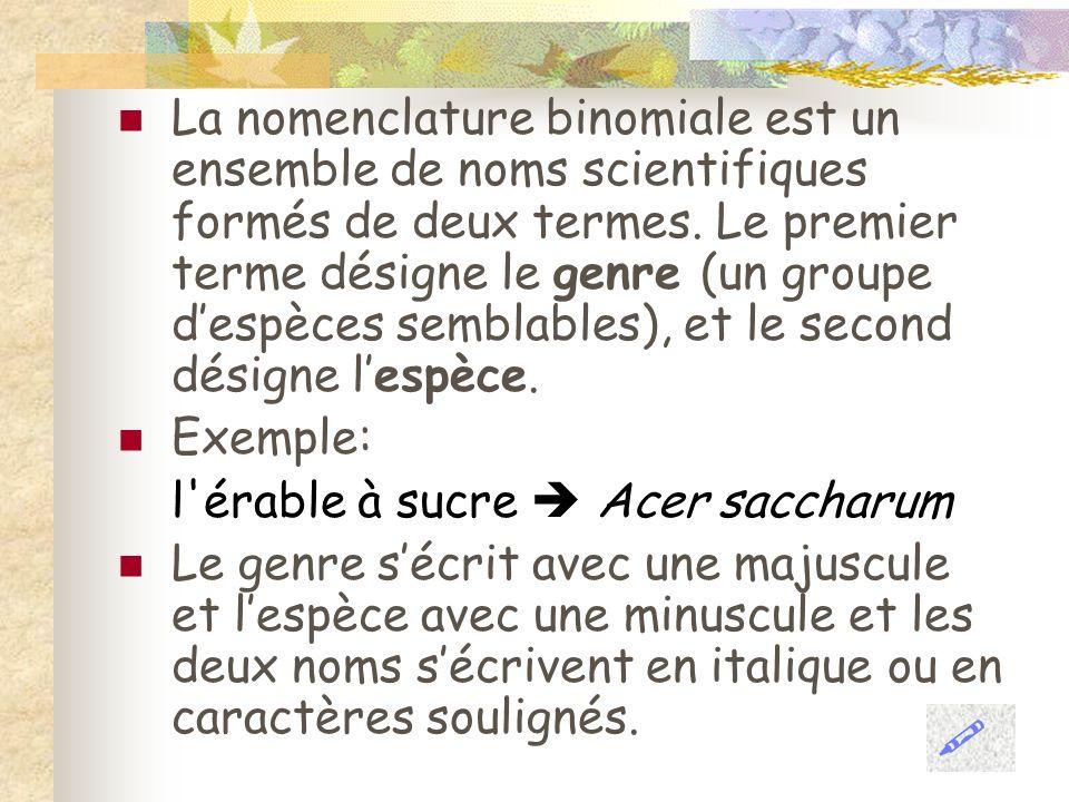 La nomenclature binomiale est un ensemble de noms scientifiques formés de deux termes. Le premier terme désigne le genre (un groupe despèces semblable