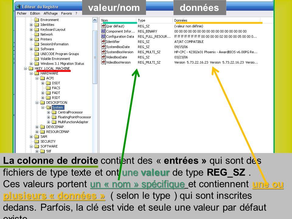 une valeur La colonne de droite contient des « entrées » qui sont des fichiers de type texte et ont une valeur de type REG_SZ.