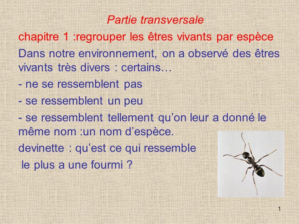 2 Réponse… Une autre fourmi!