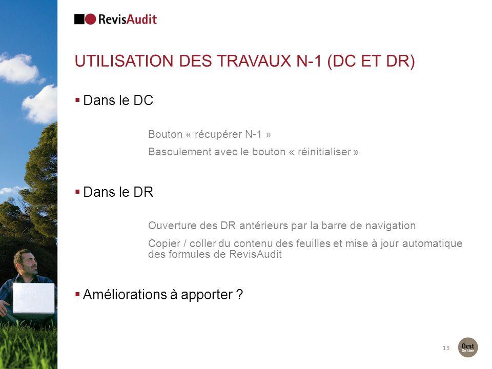 13 UTILISATION DES TRAVAUX N-1 (DC ET DR) Dans le DC Bouton « récupérer N-1 » Basculement avec le bouton « réinitialiser » Dans le DR Ouverture des DR antérieurs par la barre de navigation Copier / coller du contenu des feuilles et mise à jour automatique des formules de RevisAudit Améliorations à apporter ?