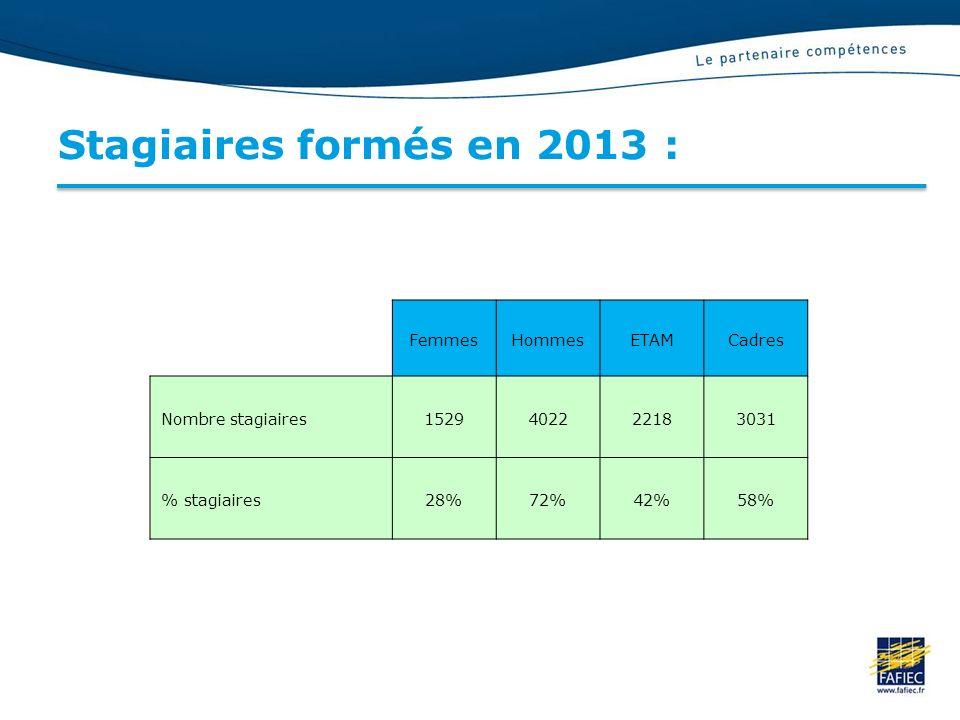 Stagiaires formés en 2013 : FemmesHommesETAMCadres Nombre stagiaires1529402222183031 % stagiaires28%72%42%58%