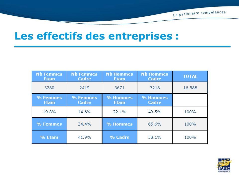 Les effectifs des entreprises : Nb Femmes Etam Nb Femmes Cadre Nb Hommes Etam Nb Hommes Cadre TOTAL 328024193671721816.588 % Femmes Etam % Femmes Cadre % Hommes Etam % Hommes Cadre 19.8%14.6%22.1%43.5%100% % Femmes34.4% Hommes65.6%100% % Etam41.9% Cadre58.1%100%