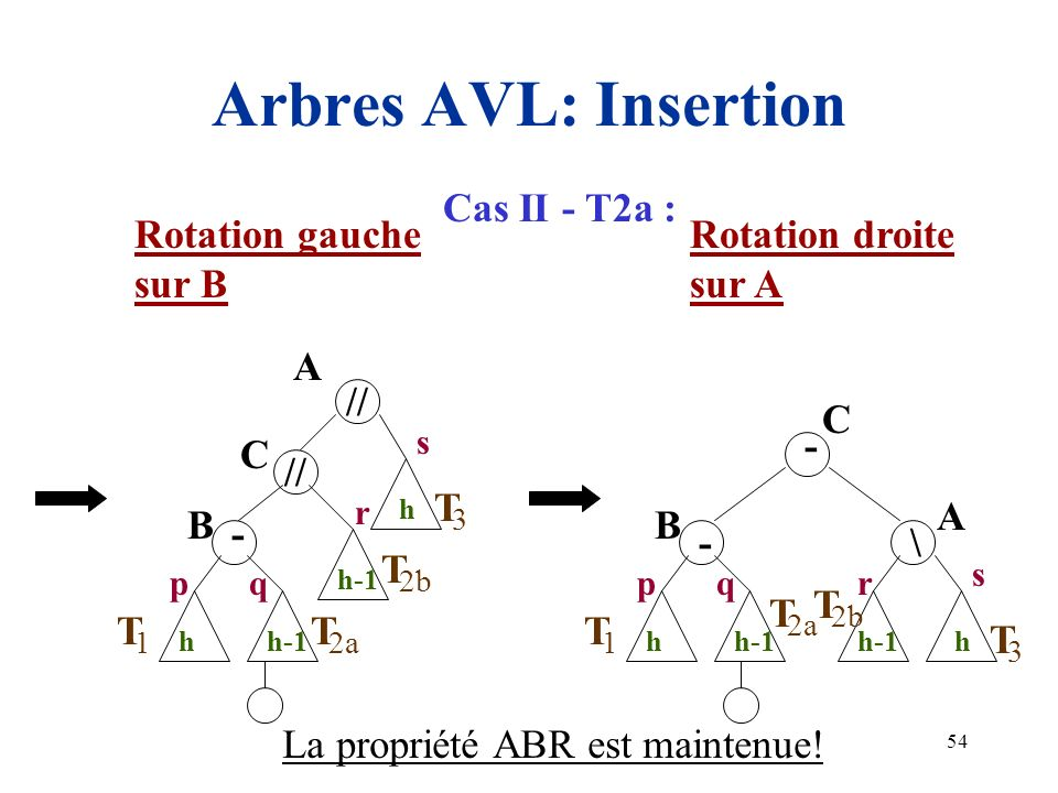 54 Arbres AVL: Insertion A 1 3 h T // B h-1 p s T 2a T 2b T q h r - C h-1 A 1 \ - B p 3 h T s T 2a T q h r - C h-1 2b T Rotation gauche sur B Rotation