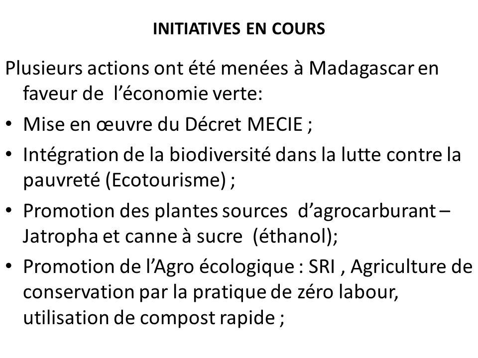 INITIATIVES EN COURS Plusieurs actions ont été menées à Madagascar en faveur de léconomie verte: Mise en œuvre du Décret MECIE ; Intégration de la bio