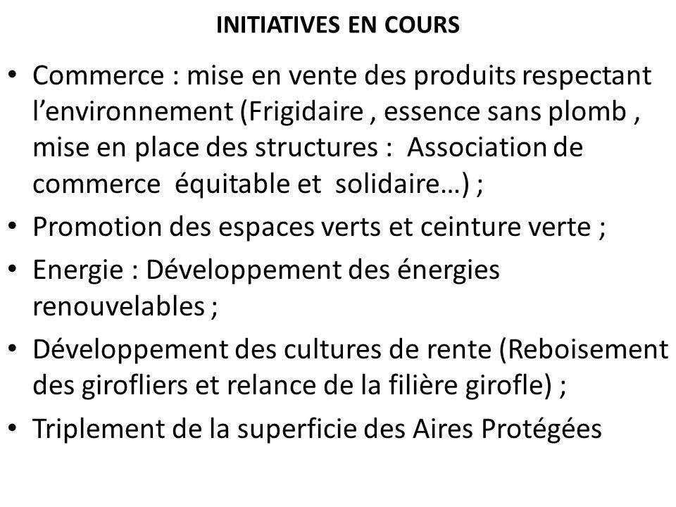 INITIATIVES EN COURS Commerce : mise en vente des produits respectant lenvironnement (Frigidaire, essence sans plomb, mise en place des structures : A
