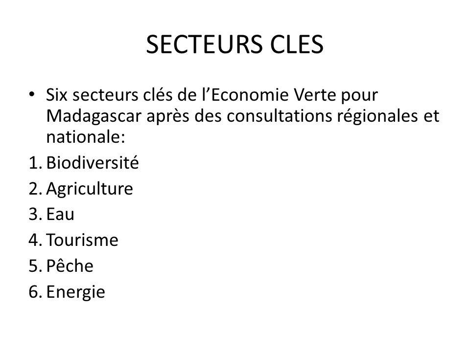 SECTEURS CLES Six secteurs clés de lEconomie Verte pour Madagascar après des consultations régionales et nationale: 1.Biodiversité 2.Agriculture 3.Eau
