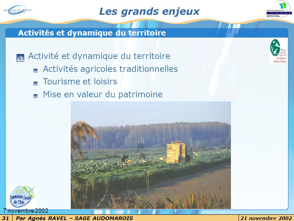Par Agnès RAVEL – SAGE AUDOMAROIS 21 novembre 2002 31 7 novembre 2002 Les grands enjeux Activité et dynamique du territoire Activités agricoles tradit