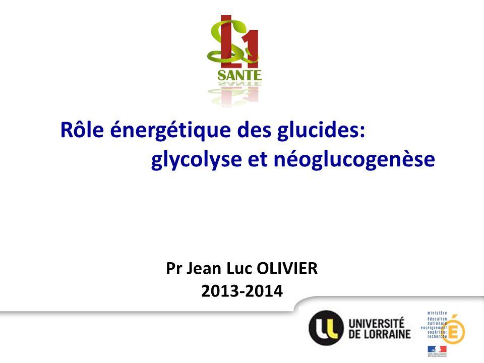 Pr Jean Luc OLIVIER 2013-2014 Rôle énergétique des glucides: glycolyse et néoglucogenèse