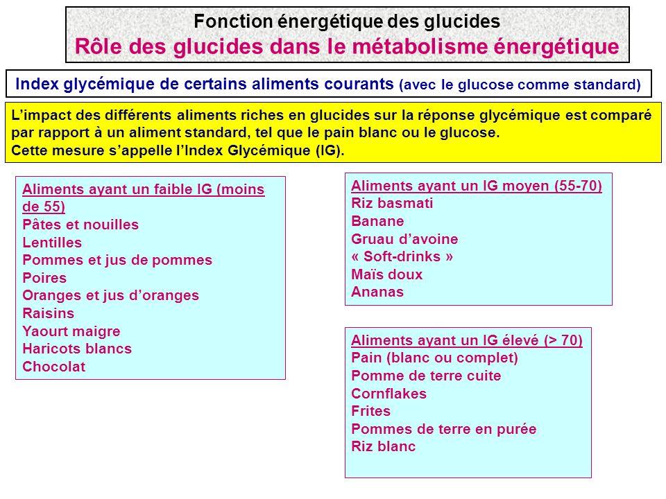 Étapes dans la digestion des glucides Les glucides sont exclusivement absorbés sous la forme de monosaccharides Polysaccharides (ex: amidon) disaccharides, trisaccharides, oligosaccharides Monosaccharides Maltase (malt.