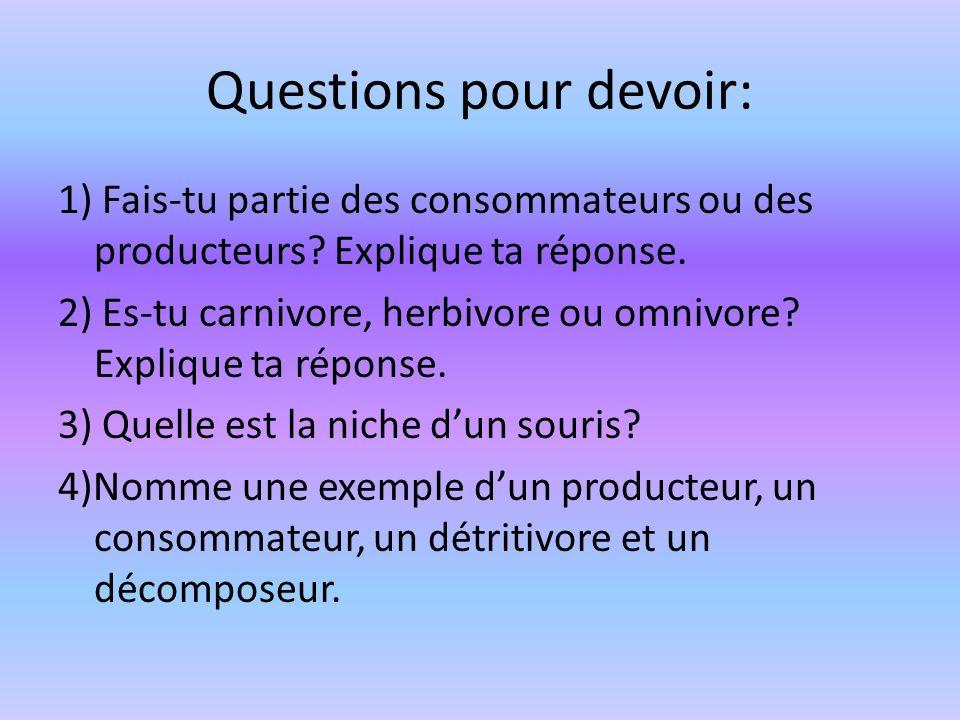 Questions pour devoir: 1) Fais-tu partie des consommateurs ou des producteurs? Explique ta réponse. 2) Es-tu carnivore, herbivore ou omnivore? Expliqu
